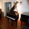 02_steinway_and_sons_fluegel_s-155